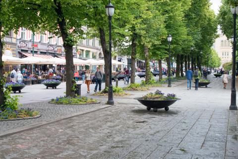 frederickstadt